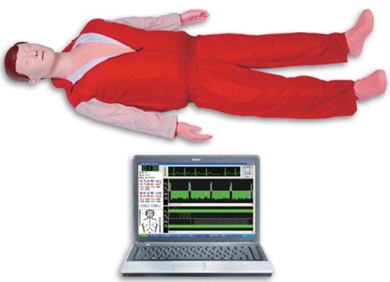 高级心肺复苏模拟人(计算机控制)JY/CPR780-上海佳悦公司,专业医学模型制造商
