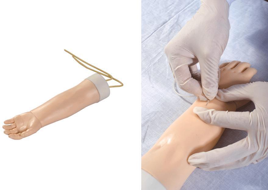 高级幼儿静脉穿刺手臂模型