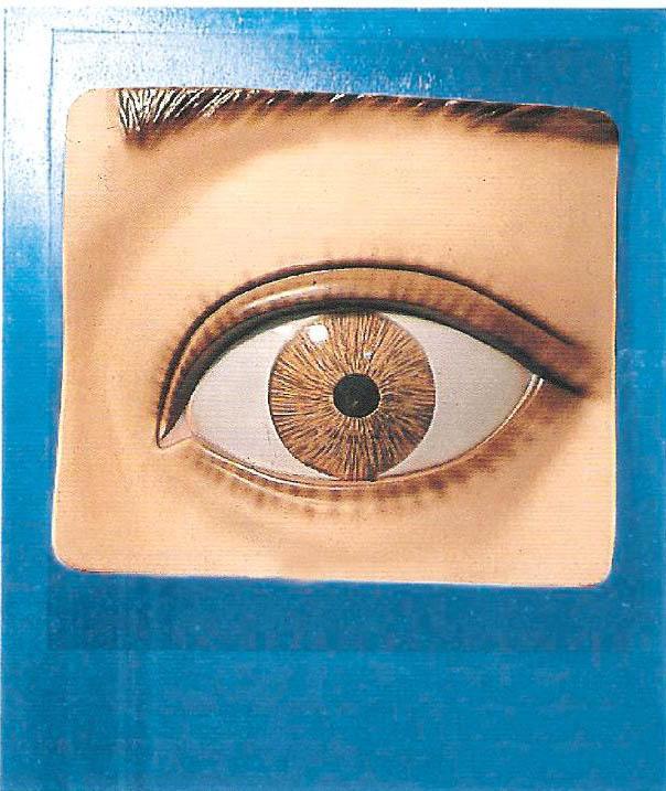 光控瞳孔调节模型是我公司自行研发生产热销的医学教学模型,欢迎各医院单位订购021-63283651