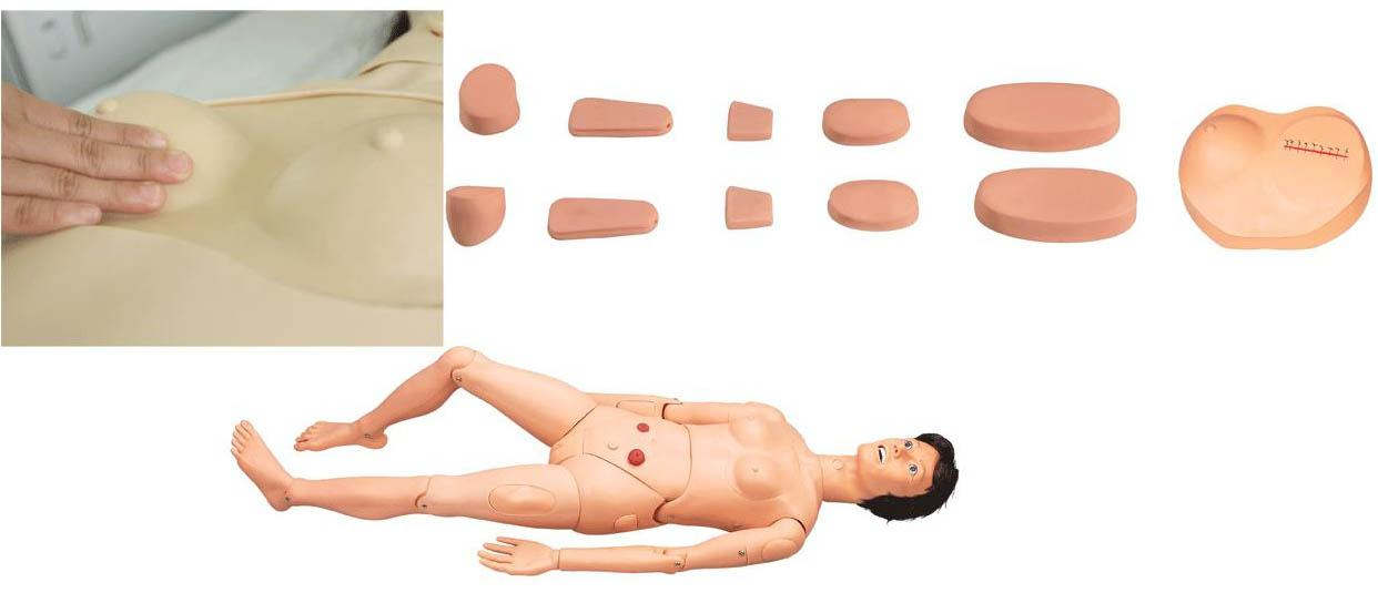 护理人体模型