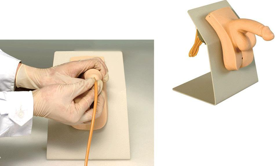 高级着装式男性导尿模型