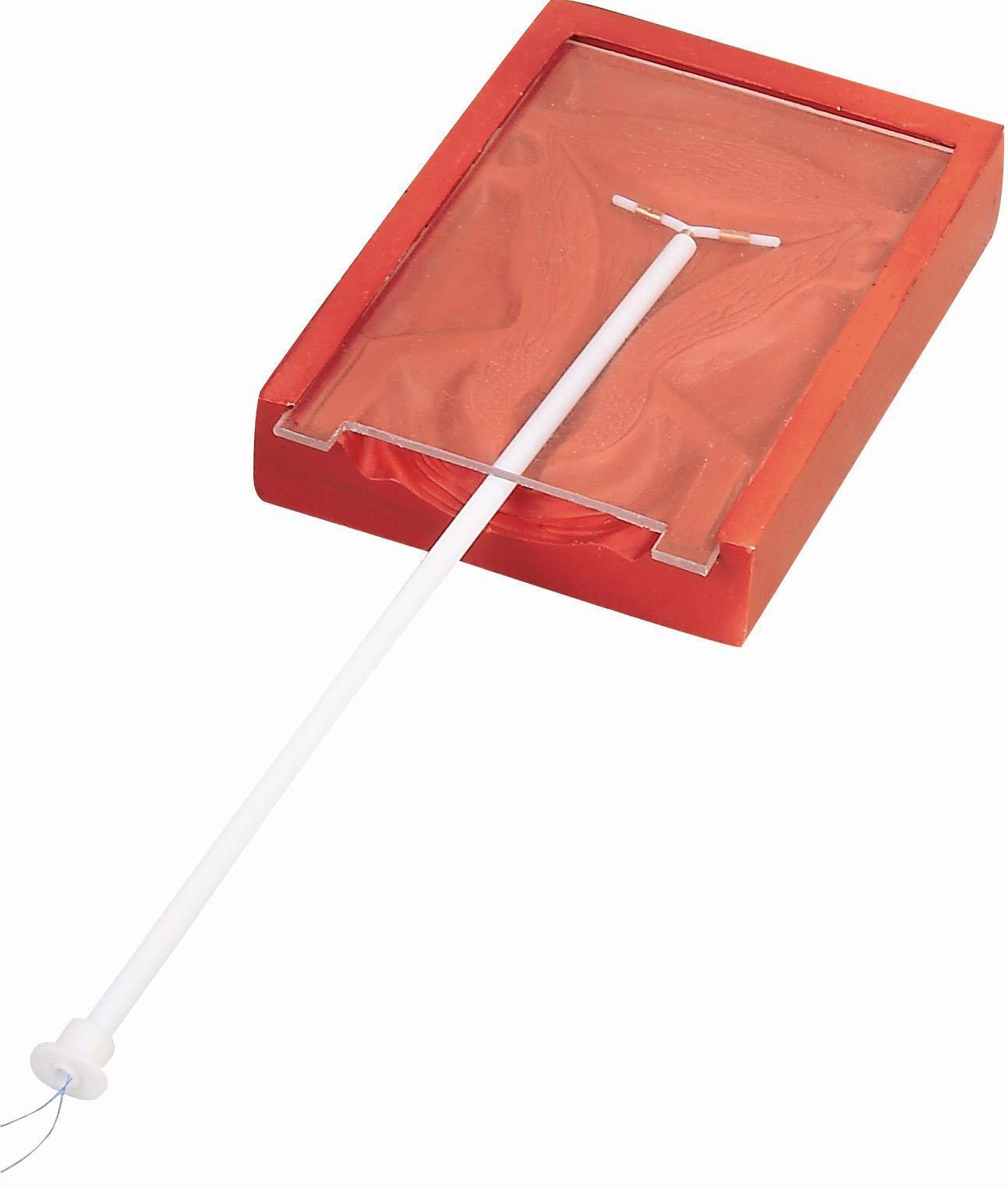 高级宫内避孕器训练模型