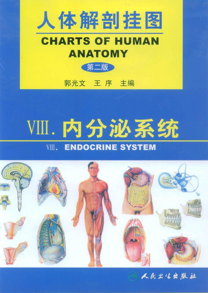 人体解剖挂图-内分泌系统 是我公司自行研发生产热销的医学教学模型,相关产品:急救训练模型,临床综合专科技能训练模型等,欢迎各医院单位订购021-63283651