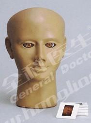 高级眼内视网膜病变检查模型