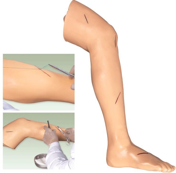 高级外科缝合下肢模型GD/LV2