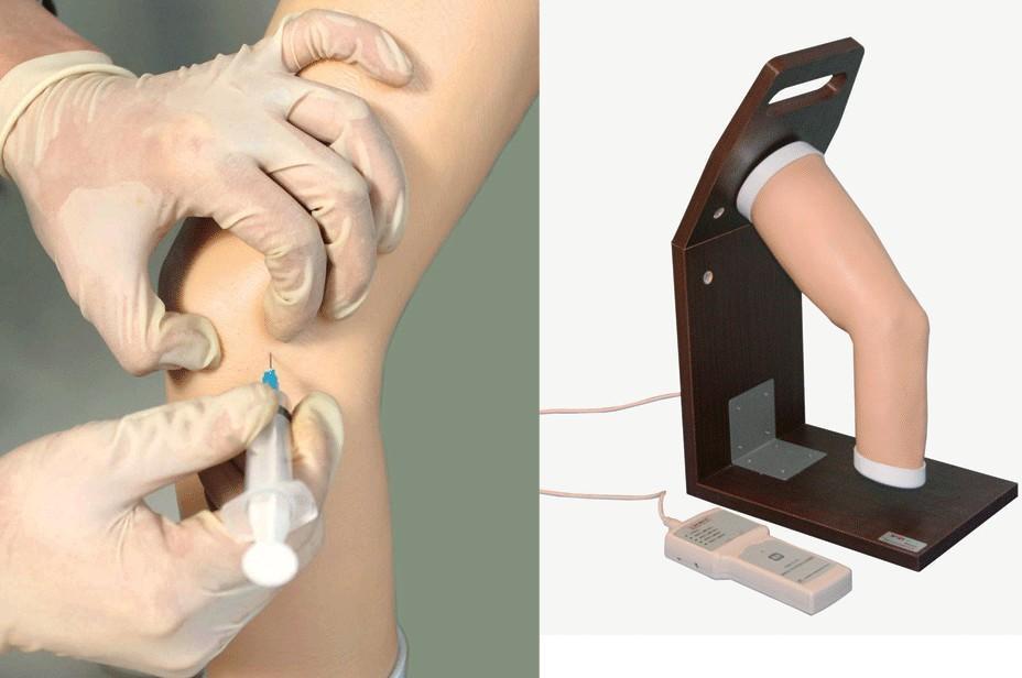 高级电子肘关节腔内注射模型GD/L71