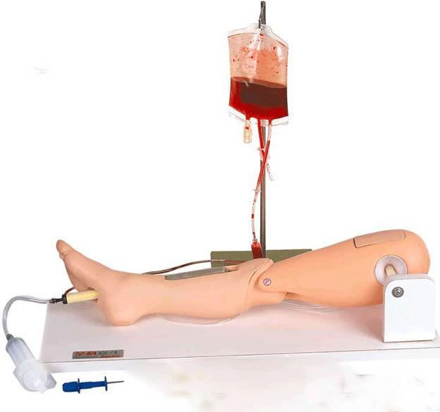骨髓穿刺及股静脉穿刺模型GD/L65A