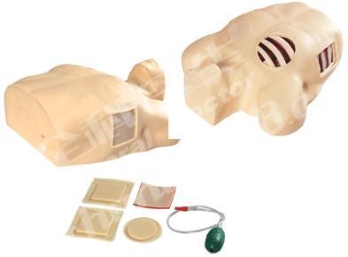 胸腔穿刺引流模型GD/L67