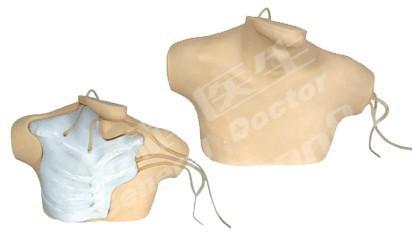 中心静脉穿刺插管模型GD/L69B