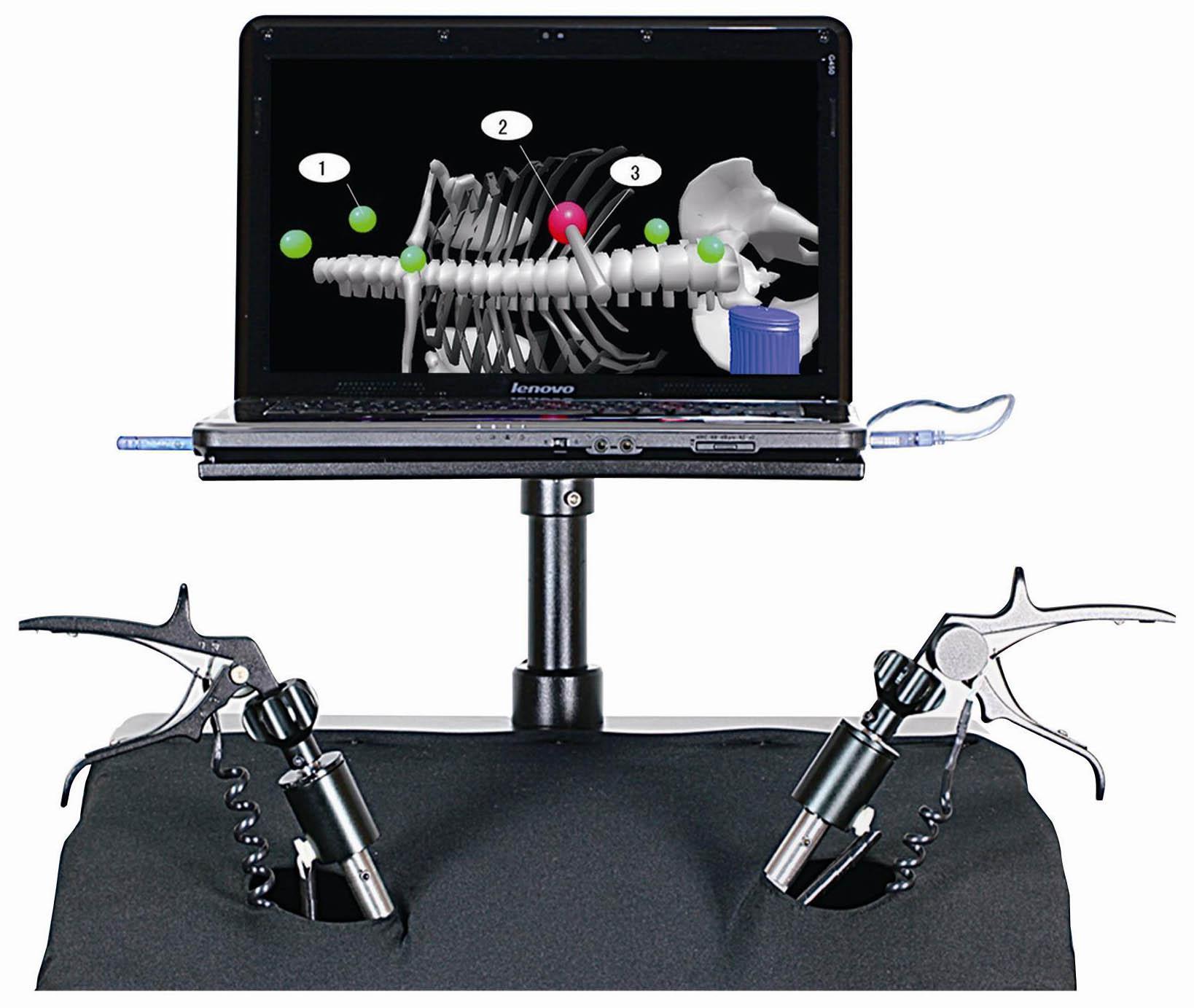 内窥镜微创手术仿真训练系统
